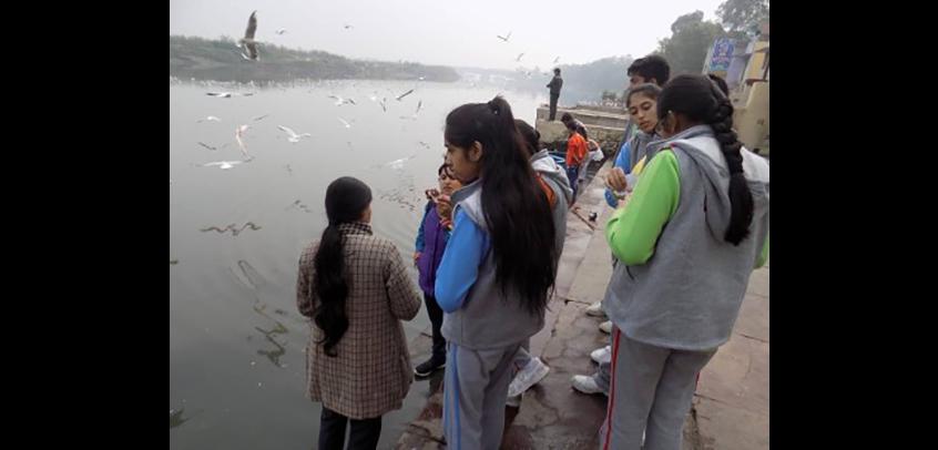 Visit to River Yamuna